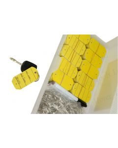 Plastic Key Tags, Yellow, Box of 200, c/w 2 Pens